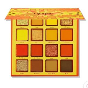 NWT kara beauty orange pop palette